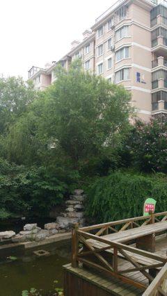 (掇刀區)億達·世紀花園3室3廳1衛102.44m2毛坯房