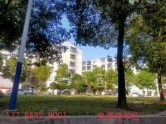 (掇刀区)清水园小区600元/月108m²毛坯房一楼出租
